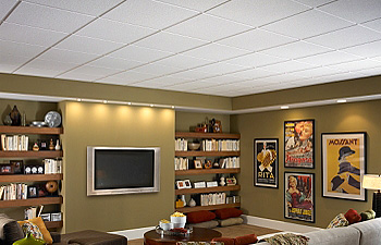 Suspended Ceilings, Closet Systems & Shelving Systems in Residential